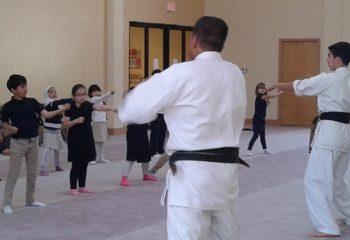 Martial arts 15